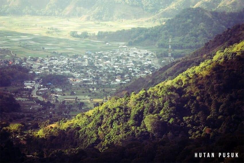 wisata lombok untuk anak Hutan Pusuk
