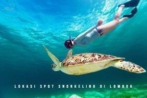 Lokasi-Spot-Snorkeling-di-Lombok