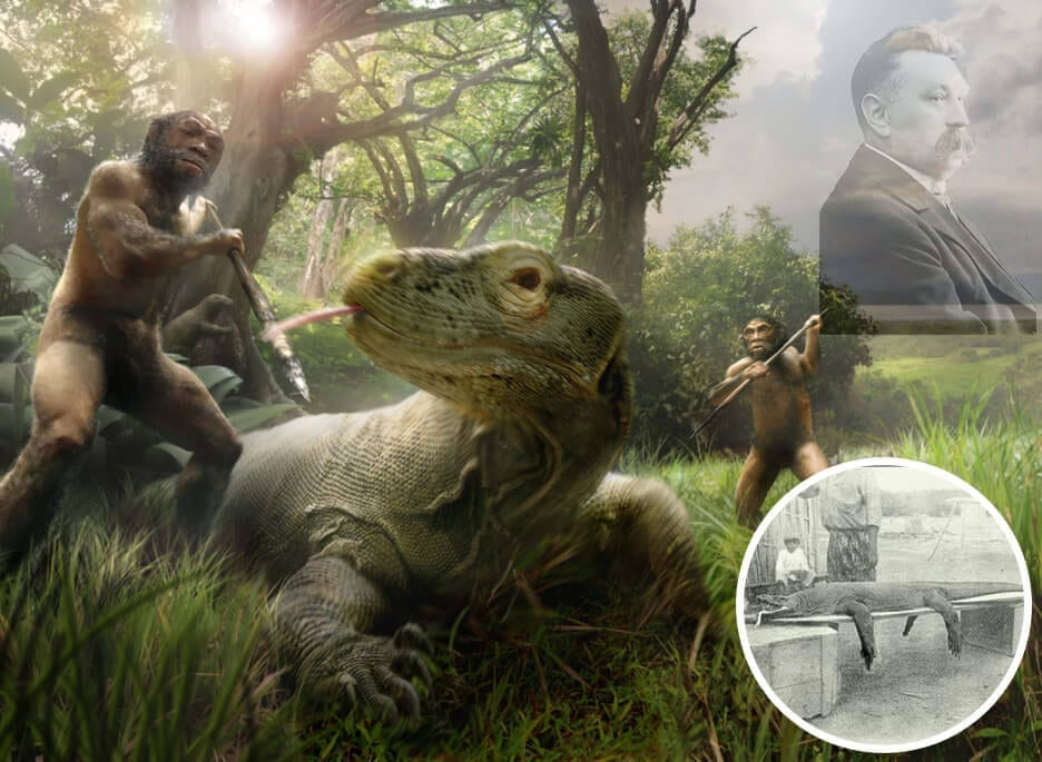 Legenda Sejarah Komodo Pieter-Ouwens-Varanus-komodoensis