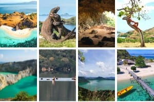 Variety of Flores tours