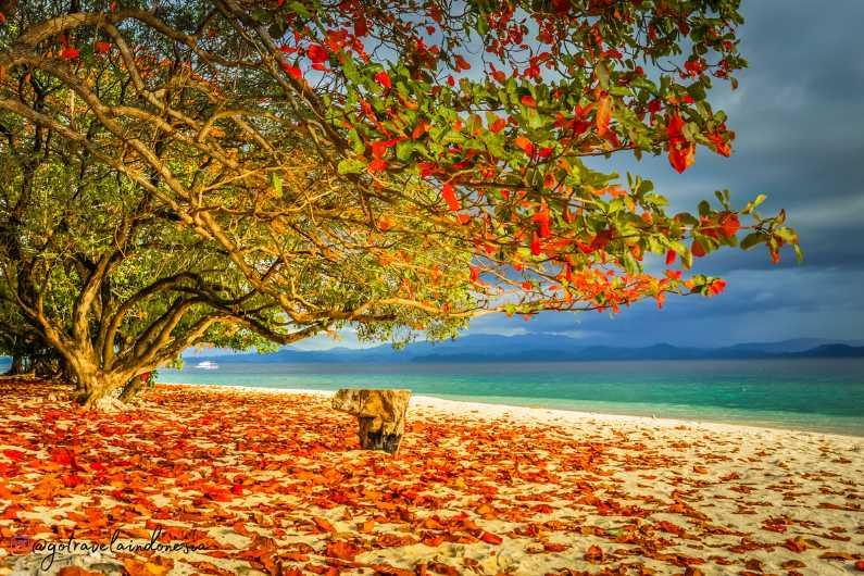 Rekomendasi Tempat Wisata Manado
