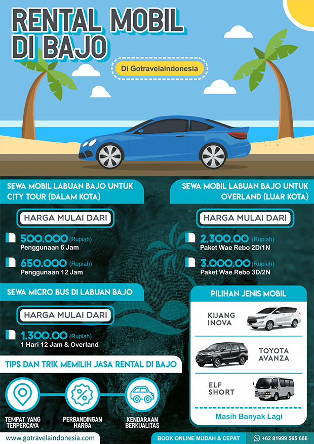infografik Transportasi Rental Indonesia