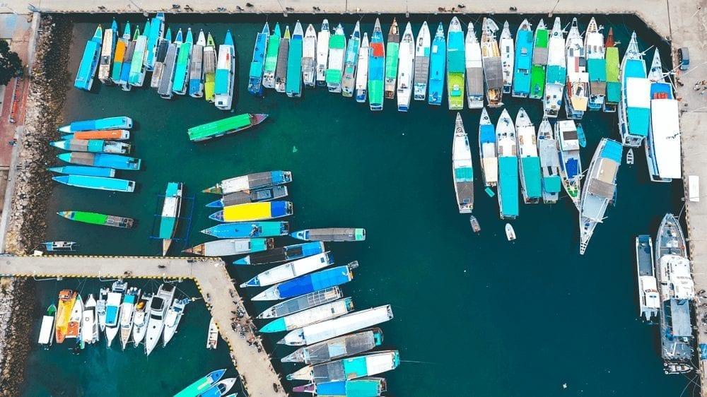 charter boat bajo
