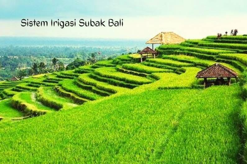 Sistem Irigasi Subak Bali