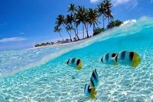Wisata Taman Laut Wakatobi