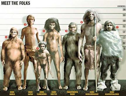 evolution-manusia-purba-dunia